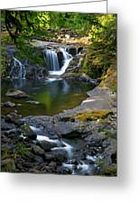 Sweet Creek Greeting Card