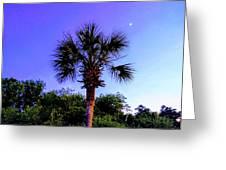Sweet Dreams Carolinas Greeting Card