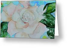 Sweet Gardenia Greeting Card