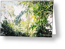Sweet Key West Green Greeting Card