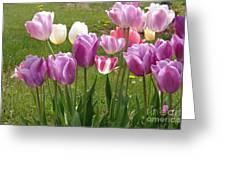 Sweet Lips Greeting Card