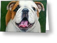 Sweet Little English Bulldog Greeting Card