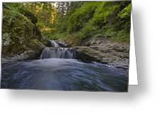 Sweet Little Waterfall Greeting Card