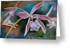 Sweet Orchid Greeting Card