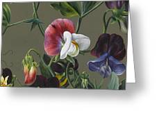 Sweet Peas And Violas Greeting Card