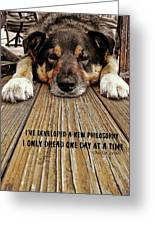 A Dogs Life Quote Greeting Card