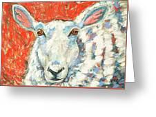 Sweet Sheep Greeting Card