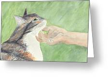 Sweet Spot Greeting Card by Kathryn Riley Parker