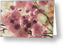 Sweet Spring Blossoms Greeting Card