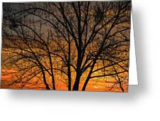 Sweet Sunset Greeting Card