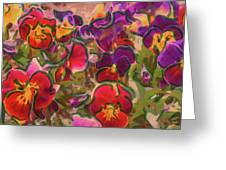 Sweet Viola Greeting Card
