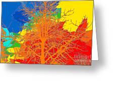 Sweetgum Greeting Card