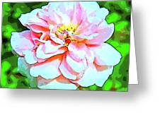 Sweetheart Rose On A Sunny Day Greeting Card