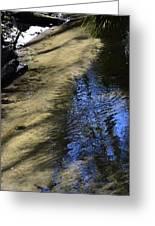 Sweetwater Creek Greeting Card