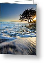 Swept Out To Sea Greeting Card