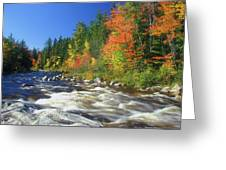 Swift River White Mountains Greeting Card