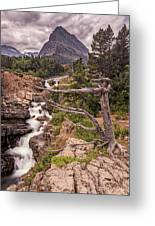 Swiftcurrent Lake Falls Greeting Card