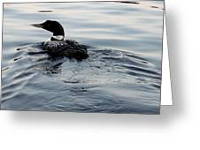 Swimming Away Greeting Card