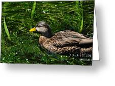 Swimming In The Grass Greeting Card