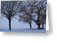 Swing In Winter Greeting Card