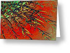 Swirl Barrel Cactus Greeting Card