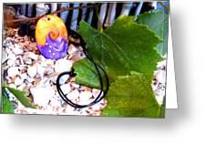 Swirl In Nature 2 Greeting Card by Chara Giakoumaki