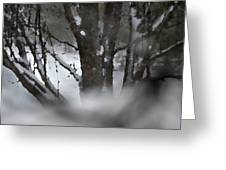 Swirling Into Winter Greeting Card