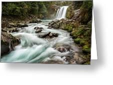 Swirling Waters - Tawhai Falls Greeting Card