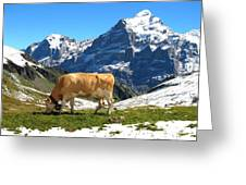 Swiss Scene Greeting Card
