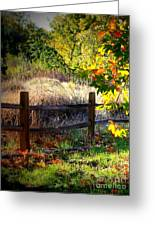 Sycamore Grove Fence 1 Greeting Card