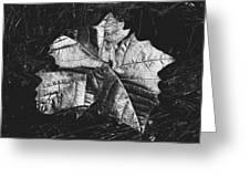 Sycamore Leaf Digital Greeting Card
