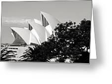 Sydney Opera House Black And White Greeting Card