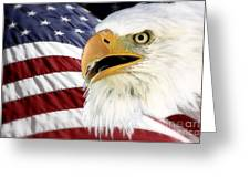 Symbol Of America Greeting Card by Teresa Zieba