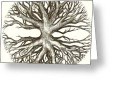Symetree Greeting Card