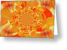 Symmetrical Abstract In Orange Greeting Card