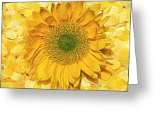 Symphony In Yellow Greeting Card