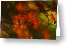 Synonymous Light Mourning A Dead Leaf Greeting Card