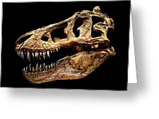 T-rex Skull Greeting Card