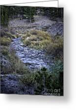 Dry Creek Greeting Card
