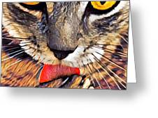 Tabby Cat Licking Paw Greeting Card