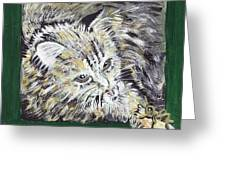 Tabby Cat With Cricket Trinket Box Greeting Card