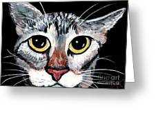 Tabby Eyes Greeting Card