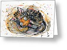 Tabby Kitten Playing With Yarn Clew  Greeting Card