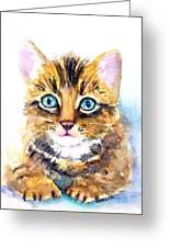 Tabby Kitten Watercolor Greeting Card