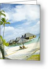 Tahiti, Bora Bora Greeting Card by Kyle Rothenborg - Printscapes