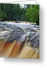 Tahquamenon Lower Falls Upper Peninsula Michigan Vertical 01 Greeting Card