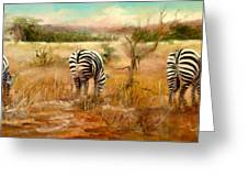 Tail Of Three Zebras Greeting Card