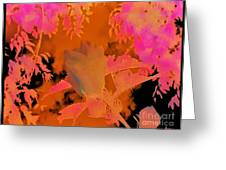 Take Three Floral Abstract Greeting Card