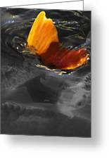 Tale Of The Wild Koi 3 Greeting Card