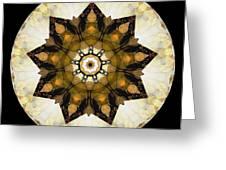 Talisman 2411 Greeting Card